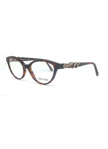Roberto Cavalli İmaj Gözlüğü Renkli